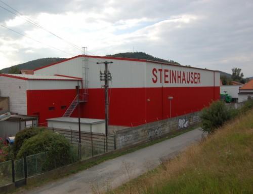 Reference STEINHAUSER